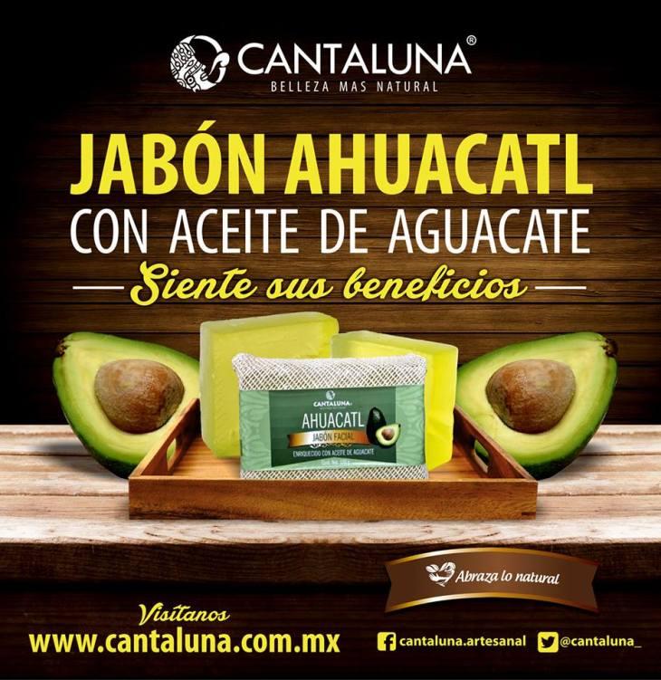 ahuacatl